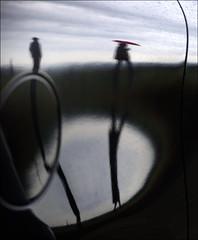 F_47A3409-2-Canon 5DIII-Tamron 28-300mm-May Lee 廖藹淳 (May-margy) Tags: maymargy 心情的故事 人像 金屬 圓圈 雲彩 下雨 雨傘 倒影 模糊 散景 幾何構圖 點人 街拍 streetviewphotography 天馬行空鏡頭的異想世界 mylensandmyimagination 線條造型與光影 linesformandlightandshadow 心象意象與影像 naturalcoincidencethrumylens humaningeometry 新北市 台灣 中華民國 taiwan repofchina f47a34092 portrait 剪影 silhouette metal raining umbrella clouds reflection blur bokeh circle newtaipeicity canon5diii tamron28300mm maylee廖藹淳