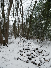 R1039761 (Stitchinscience) Tags: snow oxfordshire pile wood woodpile