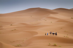 On the move in the Sahara desert near Erg Chebbi, Morocco (Tim van Woensel) Tags: erg chebbi merzouga morocco sand dunes wind blown erfoud transportation transport africa travel camel trip camels great desert