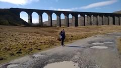 Walk to viaduct #3 (streetr's_flickr) Tags: ribbleheadviaduct settle carlisle railwaynorth yorkshirenational parkmoorlandblea moorvictorian engineering187075 masonry brickwork arches
