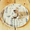 19.03.18: (Wang Wang 22) Tags: cute pug mops nici plüsch sweet hund dog wangwang
