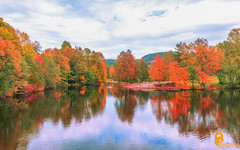 Fall colors reflection (pramodphotography7) Tags: fall autumn fallcolors reflection cloud sky water river trees colors oslo norway frysja leaves