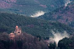 Berwartstein Castle (Michal Jeska) Tags: berwartstein castle burg pfalz pfälzerwald pfälzer wald palatinate forest erlenbach bei dahn nebel fog foggy canon eosm canonef70300mmf456isiiusm