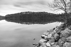 Tellico Lake in east TN (Mr. Low Notes) Tags: eosm bw blackandwhite monochrome landscape outdoors trees nature