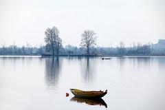 Dal Lake - A Winter Landscape (pallab seth) Tags: dallake lake kashmir srinagar india nature winter cold landscape boat fishermen charchinar charchinari ropalank rupalank vehicle travel