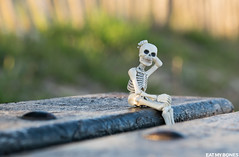 On a bench... (EatMyBones) Tags: bench figurine miniature nature poseskeleton rement skeleton toy toyphotography