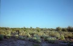 Botswana Reala-11