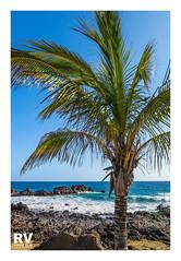 Puerto del Carmen - G16 2018-2745b (ROBERTO VILLAR -PHOTOGRAPHY-) Tags: lzphotografika rvphotografika photobank lanzarotephotográfika mejorconunafoto puertodelcarmen canong16