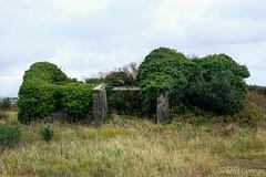 Abandoned house (Nelleke C) Tags: 2017 letterdyfehouse roundstone abandoned connemara countygalway holiday house huis ierland ireland vakantie
