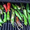 Now hands up who's tried bbq chillies? We have and perfect with our Original Chilli and Garlic salad dressing #salad #chilli #relish #rugeronis #bbq www.rugeronis.com (Rugeronis - Simply Amazing Flavours) Tags: rugeronis bbq asado meat recipes food relish pasta argentina parrilla grill