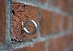 Brick Wall Eyelet (Orbmiser) Tags: mzuikoed1240mmf28pro 43rds em1 mirrorless olympus ore portland m43rds wall brick eyelet fastener