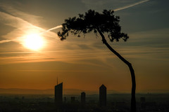 (Laetitia.p_lyon) Tags: fujifilmxt2 lyon leverdujour leverdusoleil sunrise