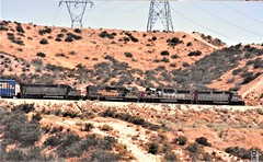 Southern Pacific and Rio Grande locomotives at Cajon Summit in 1992 (Tangled Bank) Tags: train railroad railway rolling stock cars equipment freight old classic heritage vintage fallen flag sp cajon pass summit california