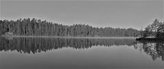 WP_20160507_07_01_50_Pro (www.ilkkajukarainen.fi) Tags: blackandwhite mustavalkoinen monochrome finland finlande suomi suomi100 eu europa scandinavia maaseutu countryside järvi lake water vesi happy life visit nature luonto uusimaa