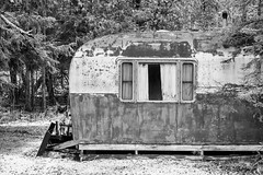 Old Travel Trailer in Michigan (Lee Rentz) Tags: americana april canadianlakes abandoned abandonment america antiquated blackandwhite camping centralmichigan curtains falling forest forsaken fun hermit home homey house lonely lonesome lowerpeninsula michigan nature northamerica old oldtimes paint precipitation recreation recreationalvehicle remote rustic rv season snow snowfall snowflakes snowing snowy stanwood trailer travel traveltrailer usa venerable weathered window winter woods