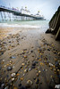 Eastbourne Pier (Rudi G.) Tags: eastbourne pier water beach shore stone wave sussex wideangle