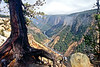 Yellowstone Vista (Deepgreen2009) Tags: river yellowstone valley usa nationalpark canyon mountains vista grand view magnificent deep high forest cliffs landscape rainbow
