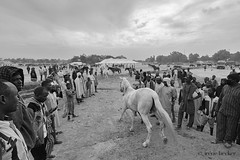 Camp For The Horse Riders (Irene Becker) Tags: arewa durbar kaduna kadunastate murtalamuhammedsquare nigeria northnigeria westafrica celebration centenary northernnigeria people photograph outdoors realpeople developingcountries africanethnicity cultural day traveldestination street communication beauty pride hausa timetravel festival parade blackandwhite monochrome