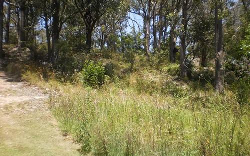 32 Tanilba Road, Mallabula NSW 2319