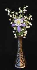 Columbine with Lily of the Valley Vase (Patti Deters) Tags: columbine color plant colorful flowers lilyofthevalley purple vase vertical white blackbackground bronze spring simple fresh