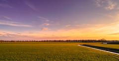 A bunch of trees waiting patiently in line. (Alex-de-Haas) Tags: oogvoornoordholland thuystenuwendore 24mm ci dji dutch eenigenburg fc6310 hdr holland huistenuwendoorn krabbendam nederland nederlands netherlands noordholland phantom phantom4 phantom4pro aerial aerialphotography cirrus cloud clouds drone goldenhour landscape landschap lucht meadows polder skies sky sundown sunset weilanden winter wolk wolken zonsondergang sintmaarten nl