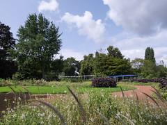 Düsseldorf - Nordpark (gernotp) Tags: blume deutschland düsseldorf düsseldorfurlaub natur nordrheinwestfalen ort park pflanze urlaub grl5al grv4al