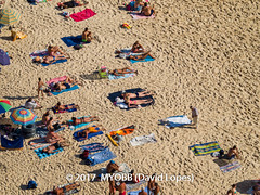 Portugal 2017-9021133 (myobb (David Lopes)) Tags: 2017 adobestock allrightsreserved atlanticocean europe nazare portugal aerialview beach beachumbrella copyrighted day daylight enjoyment highangleview leisureactivity outdoors sand sunbathing tourism touristattraction traveldestination umbrella vacation ©2017davidlopes