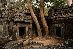 Angkor       Ta Nei Temple (JB_1984) Tags: tanei taneitemple temple remains ruins decay stone light shadow templesofangkor khmer siemreap krongsiemreap cambodia cambodge kampuchea nikon d500 nikond500