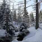 Harz-Oderbrueck_e-m10_1012074079 thumbnail