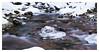 Rivulet (mariolka3) Tags: nikkor2470 nikon forest snow ice nature ndfilter longexposure rivulet river water