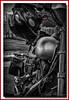 The Indicator (Deek Wilson) Tags: fxdxidynasuperglidesport harleydavidson harleyd motorbike motorcycle mono blackandwhite rider helmet sharkhelmet northernireland queensisland belfast selectivecolouring