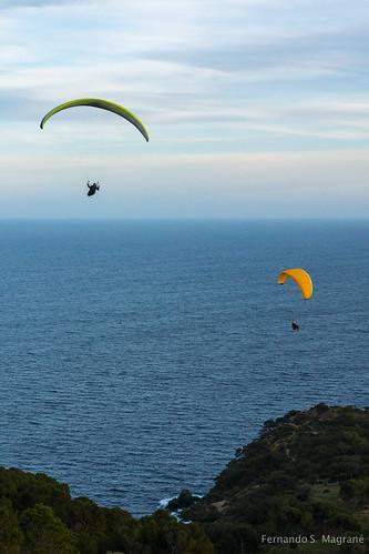 Paragliding_0831.jpg