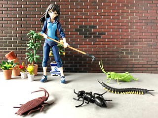 Rin versus the Insects