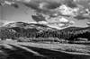 Tuolumne in the Late Afternoon (chrislon28) Tags: canonfilm canona1 tuolumnemeadows tuolumne yosemite blackandwhite kodak plusx plusx125 film landscape california canon