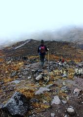 Desierto glacial (@Engalochadox) Tags: paramo conservacion colombia altamontaña futuro esfuerzosdeconservacion ecologia earth ecology recursos humanidad humanityresourse future water agua proteccion