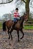 Cindy and Sophie Lesson-148.jpg (Steve Walmsley) Tags: lily jacinta horses sophie twoie lesson cindy