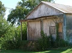 Abandoned Shack (jHc__johart) Tags: building door porch weeds vine texas
