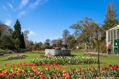 The Botanic Gardens Singleton (Eiona R. [Busy over the Weekend]) Tags: sketty wales unitedkingdom gb swanseabotanicgardenssingleton wfc
