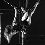 Pole Dancer ¬ 7088 thumbnail
