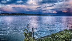 Ladder to Heaven. (j૯αท ʍ૮ℓαท૯) Tags: water constance germany waterscape beautyinnature nature colorful
