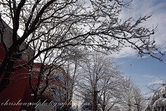 (chrishowardphotography.com) Tags: winterinohio winterphotography winterscene