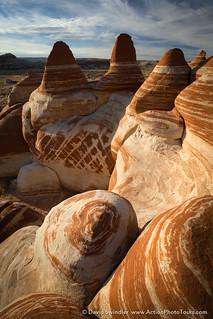 Patterns in the Desert