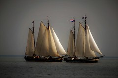 Ships (Clare-White) Tags: ships sails mast water volendam holland 2