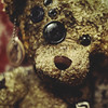 16 / 52 : 3 (Randomographer) Tags: 52weeks teddy bear soft toy form style color material fabric custom button eye plush stuffed animal plushie snuggie stuffie snuggled sewn textile battered used beat weathered 16 52 2018