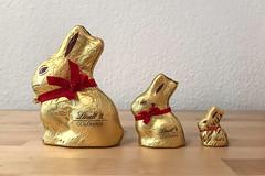 goldhasenfamilie (dadiolli) Tags: münchen bayern deutschland de lindt traditionshase ostern easter schokolade chocolate rabbit goldhase familie family