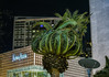 palm bouffant (pbo31) Tags: bayarea california nikon d810 color march 2018 boury pbo31 winter sanfrancisco city urban night dark black unionsquare gearystreet palm tree shopping hotel fourseasons