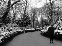 IMG_2664 (Juan Valentin, Images) Tags: jardinduluxembourg sénat palaisduluxembourg paris france winter invierno hiver snow neige nieve juanvalentin palais palacio park parque parc jardin garden whiteandblack blancoynegro biancoenero noiretblanc