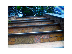 """""""Stairs to nature ..."""" (Guilherme Alex) Tags: stairs heaven life tree world mycity city live green concrete colorful beautiful march autumn contrast sunday light infinite nature plaza center square central perspective angle digitalcamera samsung amazing shot wonderful myworld teofilootoni minasgerais brazil cityscape landscape architecture rocks design floor walking day"""