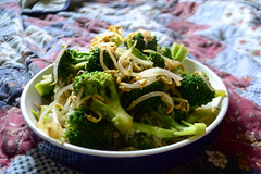 Bean Sprouts and Broccoli (Vegan) (Vegan Butterfly) Tags: vegetarian vegan food yummy tasty meal delicious broccoli bean sprouts vegetables veggies lunch plate