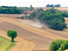 La moisson - Alentours de Mantes (CHAK LUMIKS) Tags: harvest moisson manteslajolie paysagedesyvelines paysage lumixgx85 lumixgx80 olympus75300ii iledefrance